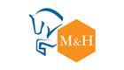 Money-Horse-Logistics-Ltd